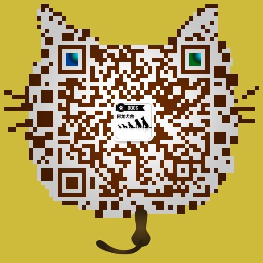 正规猫舍繁育直销纯种健康豹猫,纯种豹猫幼猫,豹猫活体图片5
